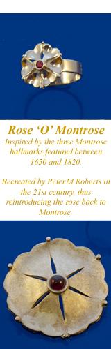 Rose of Montrose